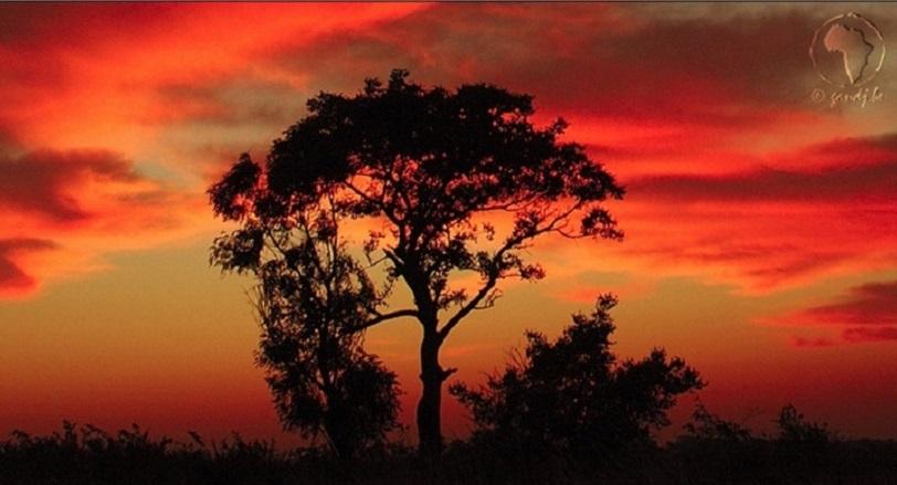 http://inyoureyes.cowblog.fr/images/zen/066440600118707947680200164187Copie.jpg